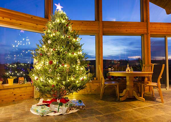 Why We Put Up Christmas Trees