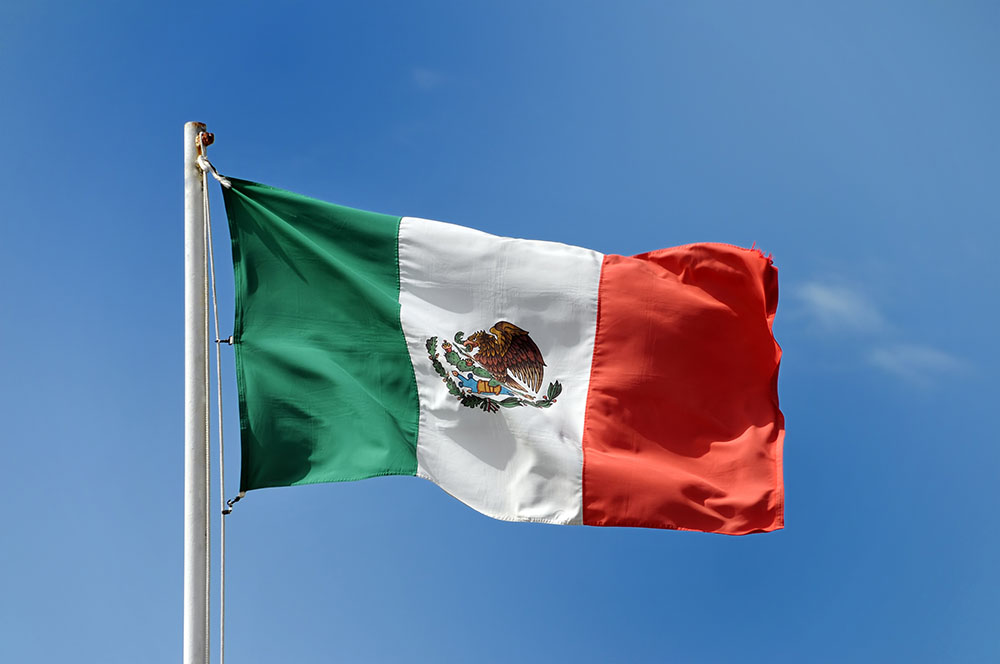 Constitution Day Mexico Flag