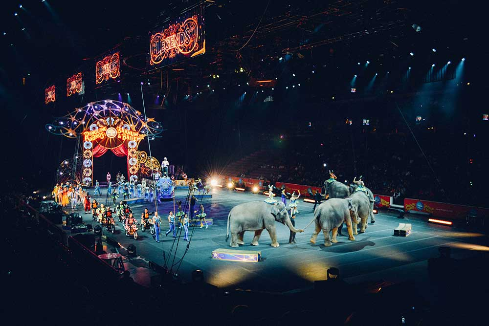 World Circus Day