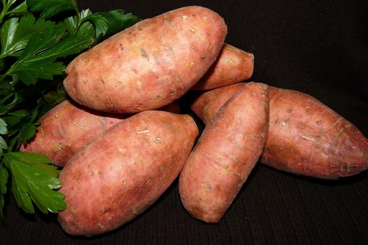 Cook a Sweet Potato Day