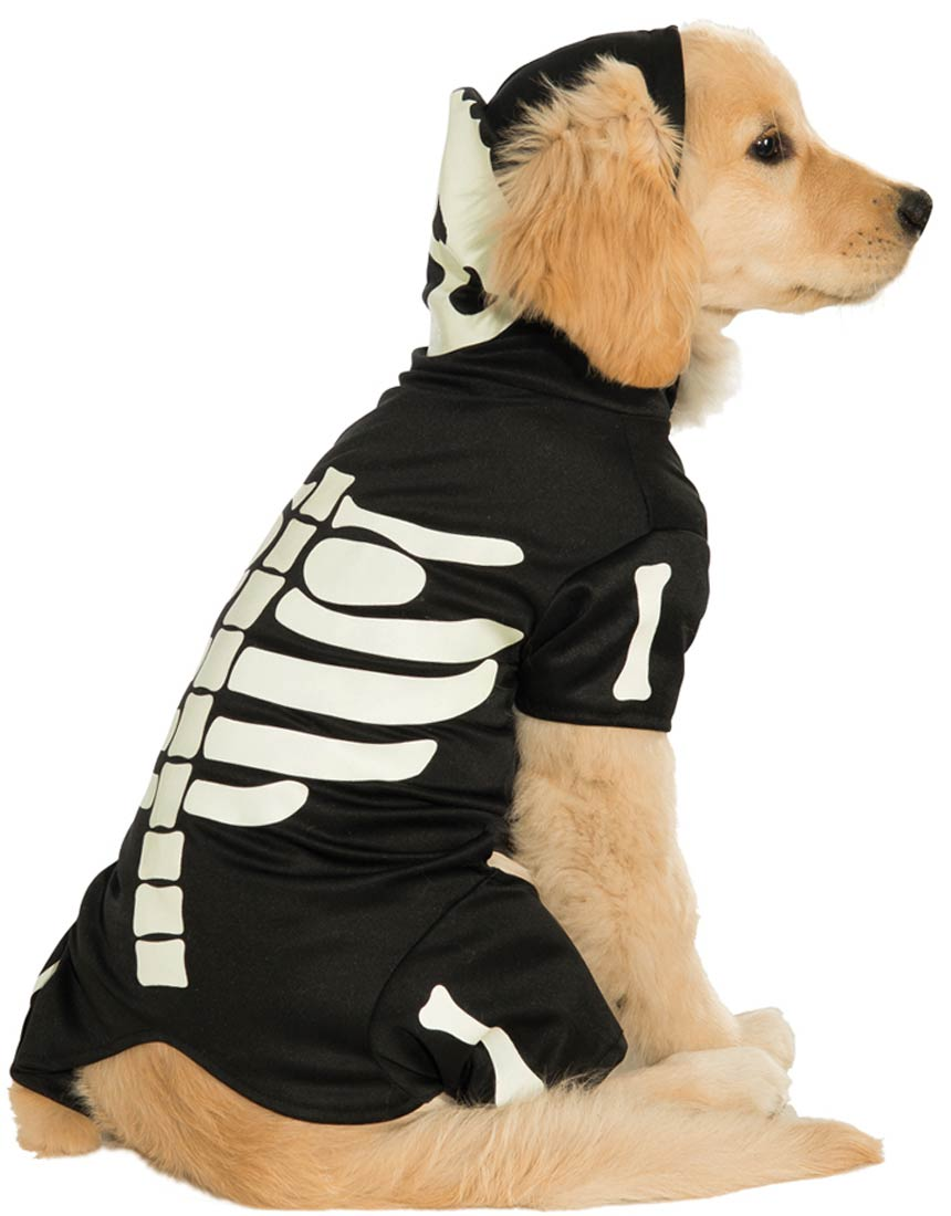 Skeleton Costume  sc 1 st  HolidaySmart & 40 Adorable Halloween Costumes for your Pet | HolidaySmart