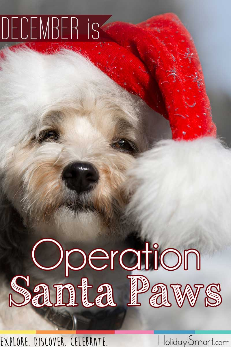 Operation Santa Paws Holidaysmart