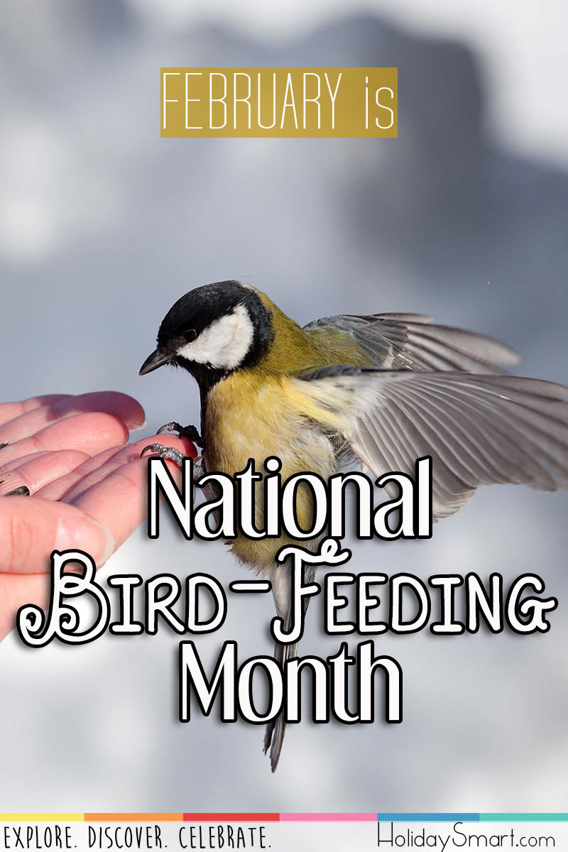 February is National Bird-Feeding Month