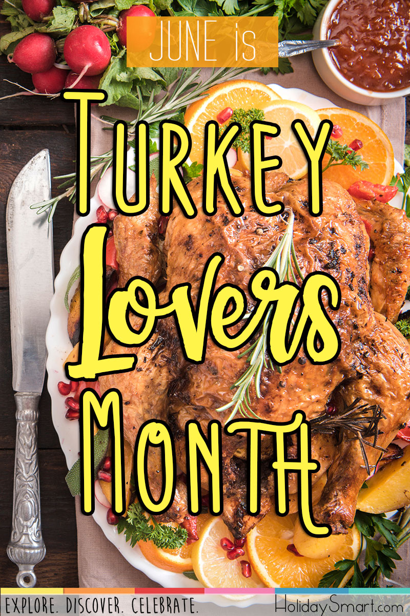 Turkey Lover S Month Holidaysmart