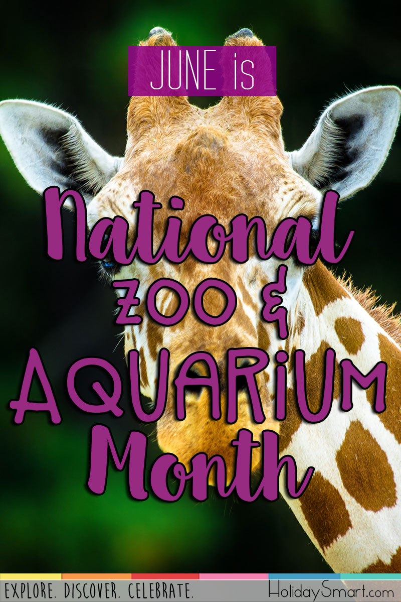 National Zoo & Aquarium Month | HolidaySmart