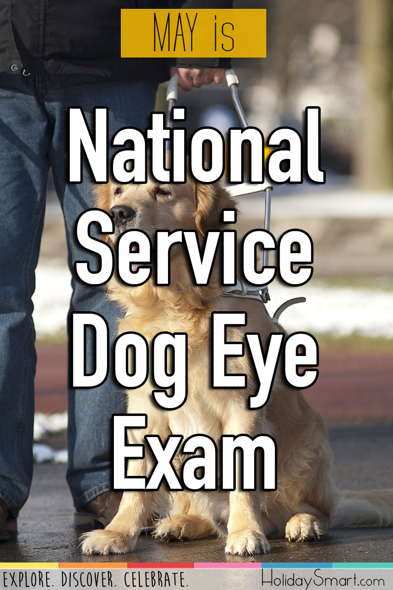 National Service Dog Eye Exam Month Holiday Smart