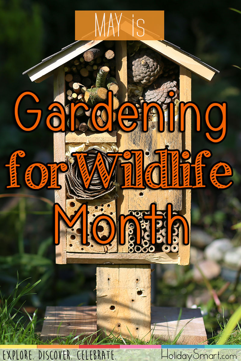 Gardening For Wildlife Month Holidaysmart