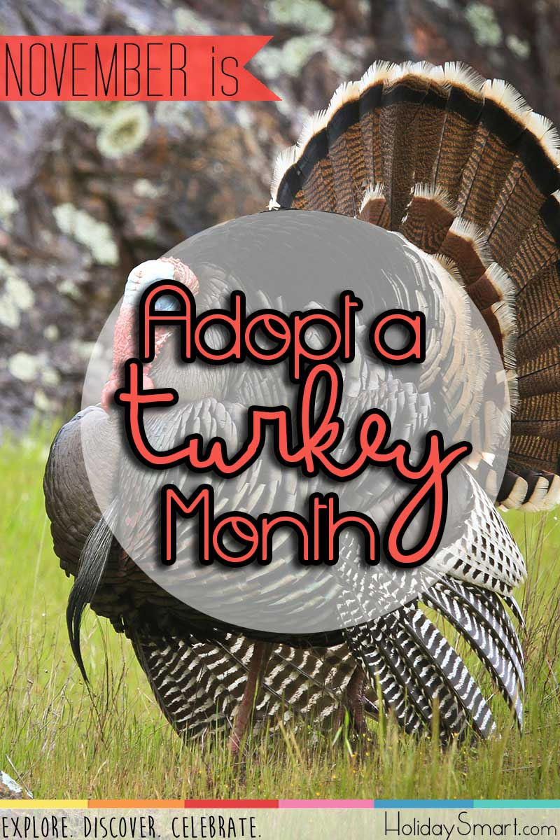 November is Adopt a Turkey Month