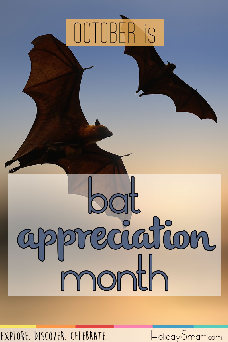 October is Bat Appreciation Month