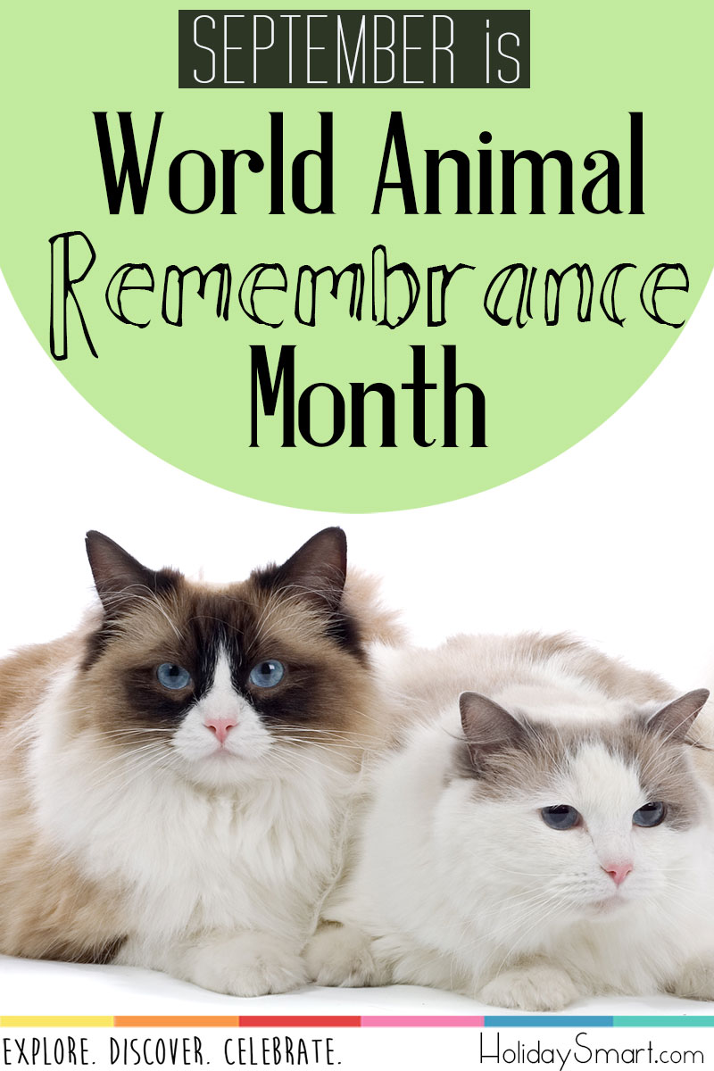 September is World Animal Remembrance Month
