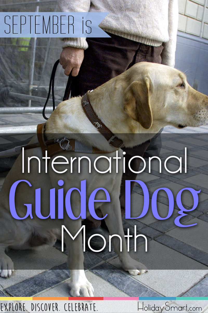 September is National Guide Dogs Month!