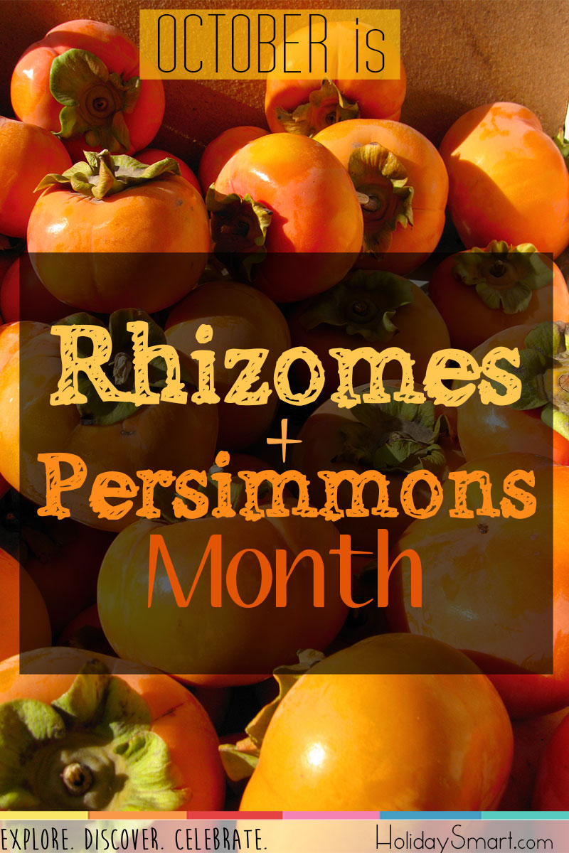 October is Rhizomes and Persimmons Month