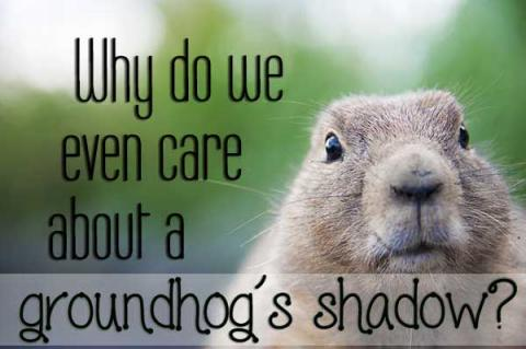 Why do we even care about a groundhog's shadow