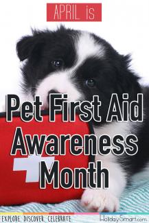 April is Pet First Aid Awareness Month