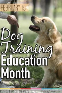 February is Dog Training Education Month