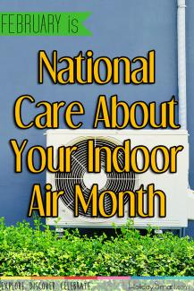 February is National Care About Your Indoor Air Month