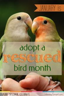Open configuration options Adopt a Rescued Bird Month Open Primary tabs configuration options Primary tabs