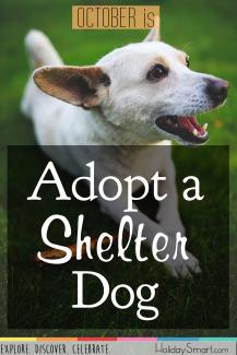 Adopt a Shelter Dog Month